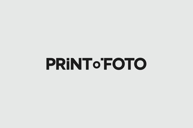 2_logotypes